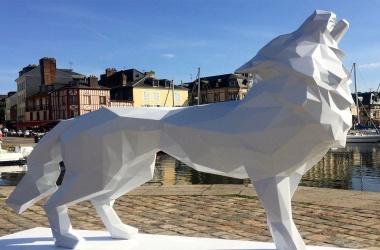 Loup hurleur blanc (Howling wolf)